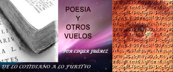 Poesía y Otros Vuelos
