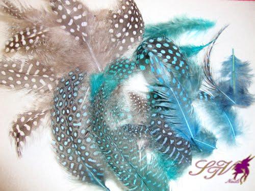 M del mar romero plumas para decorar for Plumas para decorar