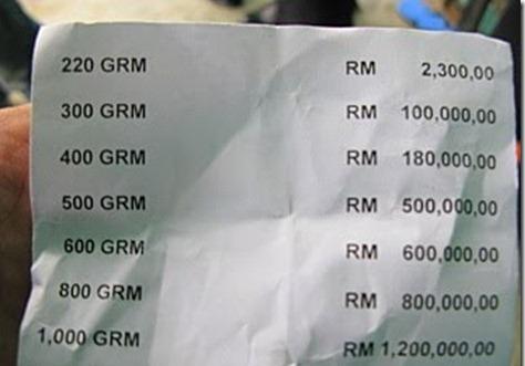 harga tokek & jual beli tokek di malaysia/indonesia