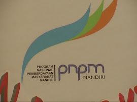 INFO PNPM MP-LMP KEC.MALLAWA