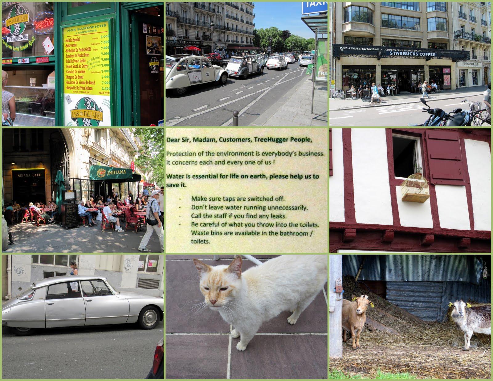 http://4.bp.blogspot.com/_NPacLTEgTKc/TBGnISsb8PI/AAAAAAAAEXc/XGphKV-GAF8/s1600/2010_France_Fun_Photos2.jpg