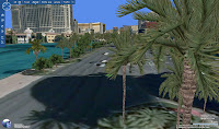 Virtual Earth - palmy w Las Vegas