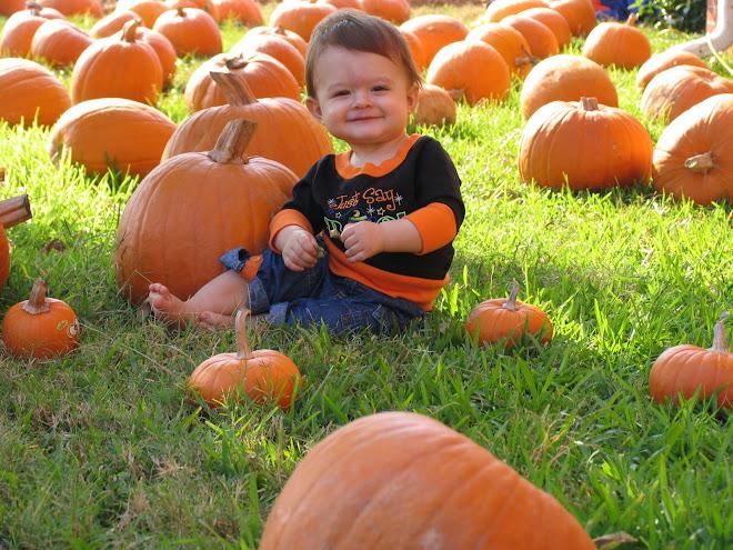 Babe in pumpkins
