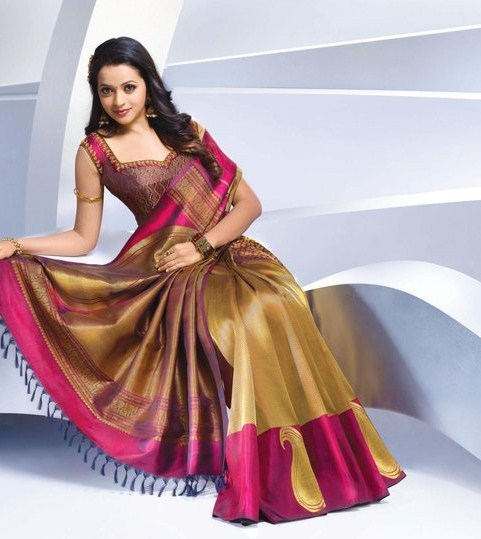 Actress Bhavana Latest Pics in Saree hot images