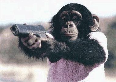 monkey-war.jpg