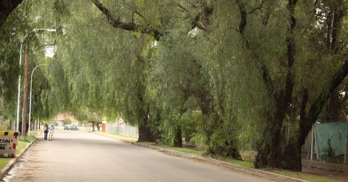 Mi ciudad c rdoba argentina barrio jardin for Barrio ciudad jardin barranquilla