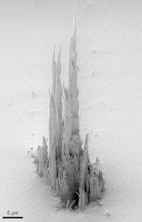 Un polímero que parece una Sagrada Familia microscópica [Foto: Irene Fernández Cuesta, CSIC]