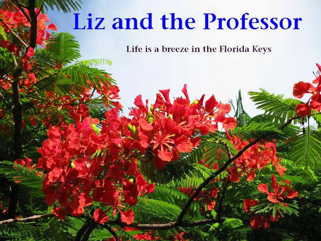 Liz and the Professor