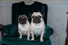 Lola and Bing