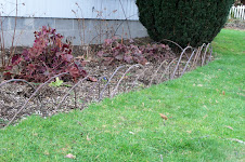 Apple Twig Border
