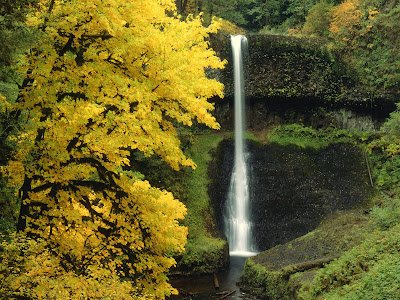 Middle North Falls Beautiful Nature Wallpaper
