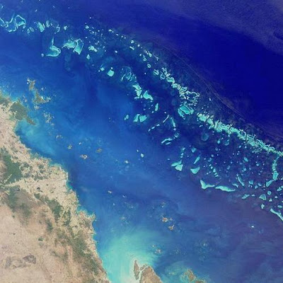 The Great Barrier Reef Picture