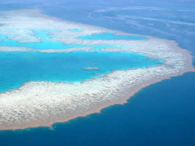The Great Barrier Reef Australia Picture