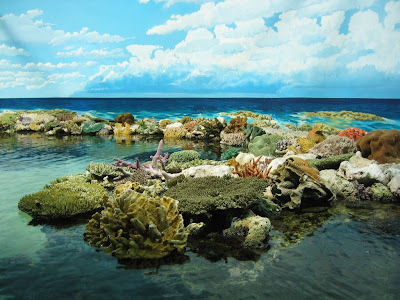 The Great Barrier Reef Beautiful Picture