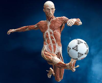 Musculo Futebol