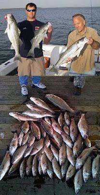 Lake Texoma striper fishing guide Brian Pricard, Lake Texoma Fishing Report