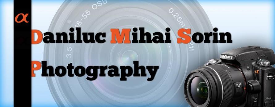 Daniluc Mihai Sorin Photography