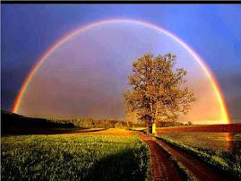Que a nossa convivência seja iluminada e pacífica