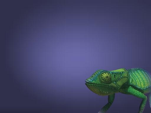 Lizard Wallpaper 01