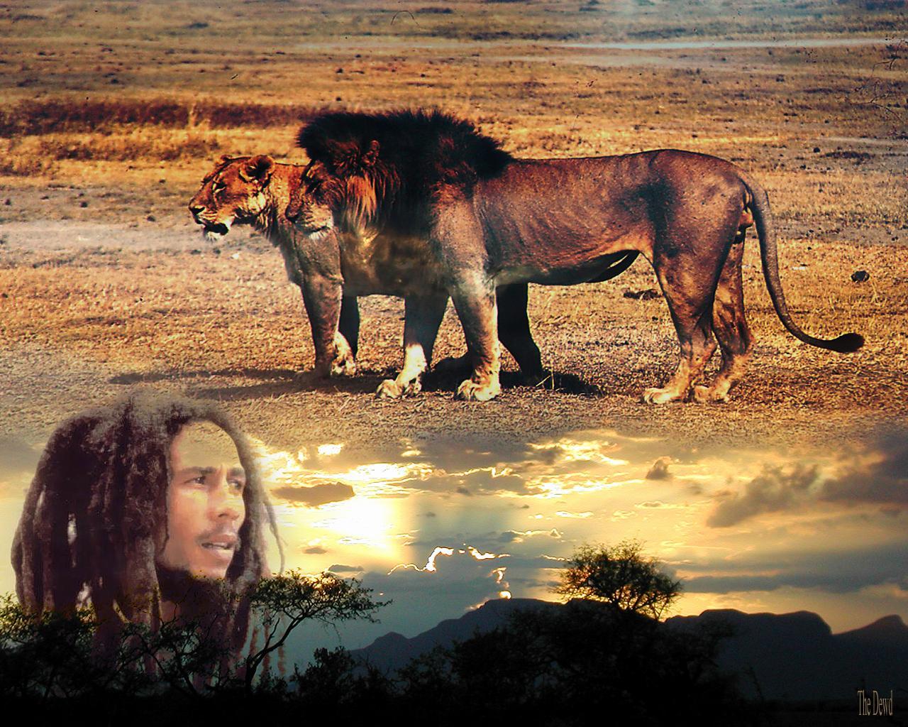 http://4.bp.blogspot.com/_NfL3G9J_JlA/TJ840zpXqPI/AAAAAAAAAF8/fmBT8PuMBGY/s1600/Bob_Marley-lion-judah-god.jpg