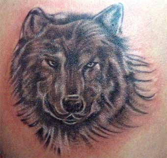 shoulder wolf tattoo design