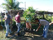 Curso de Agrofloresta junho 2010