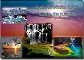 Cartel de Medio Ambiente