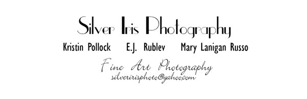 Silver Iris Photography