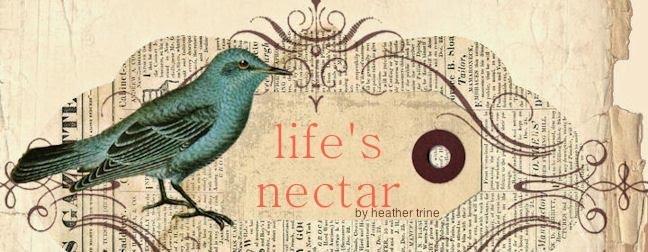 life's nectar