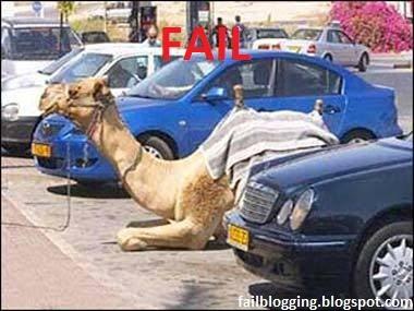 Smiješne slike Camel+fail