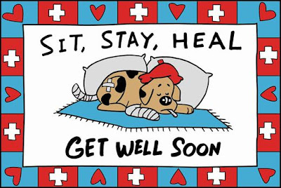 Beautiful wallpapers get well soon greeting card get well soon card image injured dog with thermometer in mouth message in the greeting card get m4hsunfo