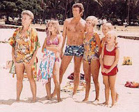 Brady Bunch in Hawaii and a hot looking Robert Reed as Mr. Brady