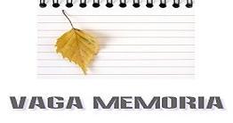 VAGA MEMÓRIA