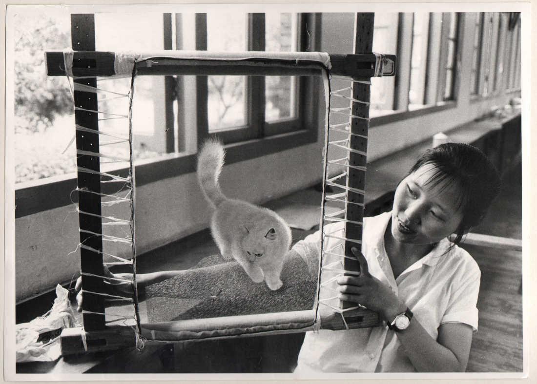 l 39 il des chats trompe l 39 oeil du chat chinois. Black Bedroom Furniture Sets. Home Design Ideas