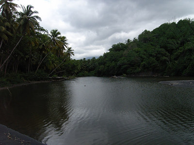 Palm Line River, Dominica