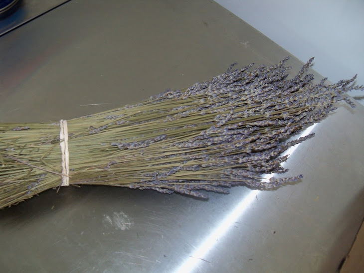 Fresh Lavender Bundles
