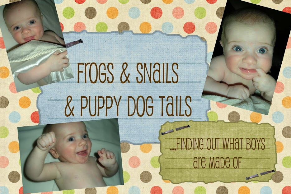 Frogs and Snails and Puppy Dog Tails