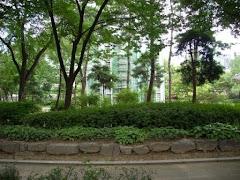 Seoul Park near Insadong