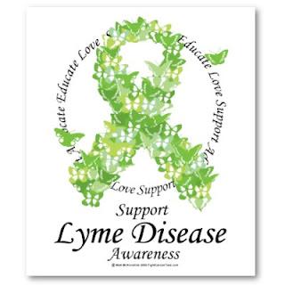 essay on lyme disease