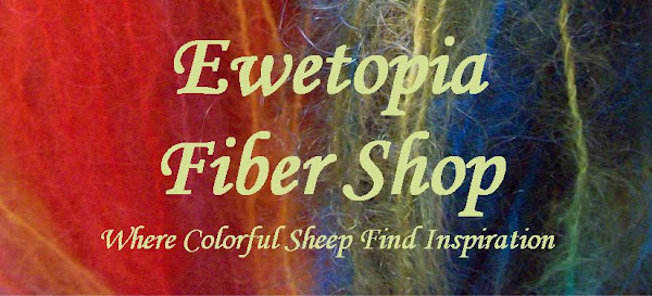 Ewetopia Fiber Shop