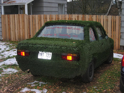 15 Cool Grass Covered Cars (16) 7