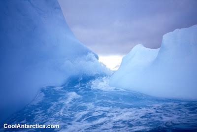 Cool Antarctica (5)  2