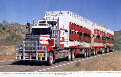 Road Train (20) 11