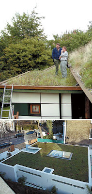 Cool and Creative Green Roofs (21)  8