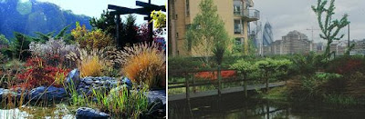 Cool and Creative Green Roofs (21)  6