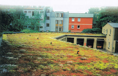 Cool and Creative Green Roofs (21)  11