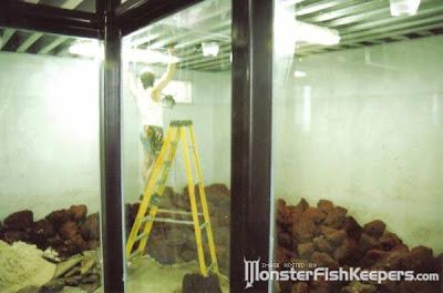 tank aquarium (6) 8