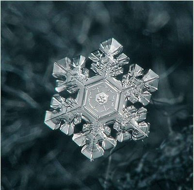 Beautiful Snowflakes (21) 1
