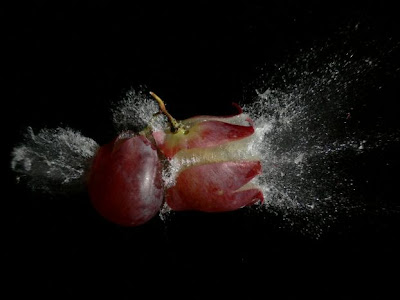 Awesome High Speed Photography (17) 16