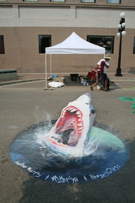 3D Street Paintings (21) 9